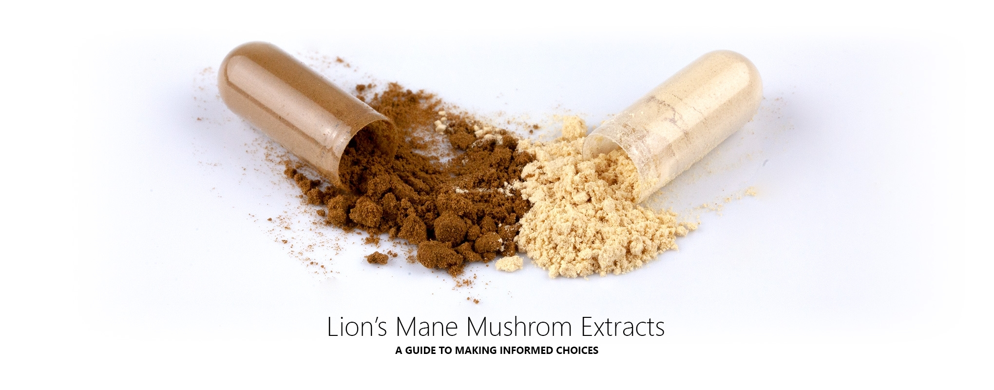 Our Guide to the Best Lions Mane Mushroom Extract Supplements in the UK